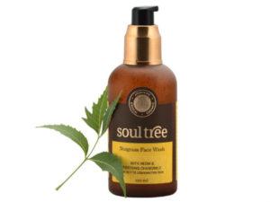 SoulTree – Καθαριστικό Προσώπου με Εκχύλισμα Μανταρινιού & Χαμομήλι / Nutgrass Face Wash