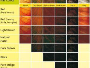 Khadi_Herbal_Hair_Colour_2