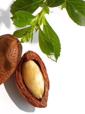 Το Βιολογικό Έλαιο Jojoba της 7elements (Simmondsia Chinensis Seed Oil) παράγεται με την μέθοδο της ψυχρής έκθλιψης. Η υψηλή του περιεκτικότητα σε υποπροϊόντα λίπους και βιταμίνη Ε προσφέρει προστασία και απαλότητα.