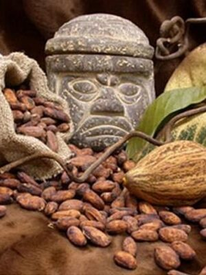 Nomadi-Foods-The-Barbarian-Raw-Bar-Cocoa-AZTEC